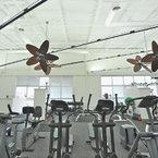 Caruso ventilador con rotación vertical, acabado estaño cromado, con aspas de bambú, en un gimnásio