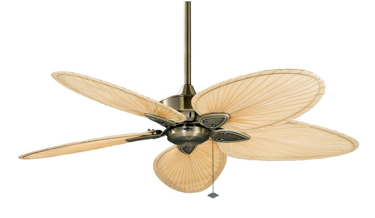 Windpointe ventilador de techo lat n antiguo 5 436 00 - Ventiladores de techo antiguos ...